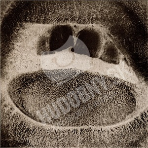Skullflower - Kino II - Form Destroyer od 25,49 €