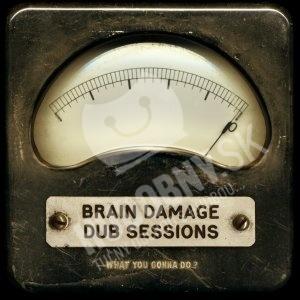 Brain Damage - What You Gonna Do ? od 24,89 €