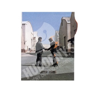 Pink Floyd - Wish You Were Here [R] od 15,99 €
