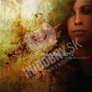 Alanis Morissette - Flavors of Entanglement od 9,99 €