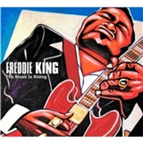 Freddie King - Blues Is Rising