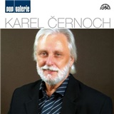 Karel Černoch - Pop galerie