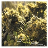 Plateau - Kushbush + Music For Grass Bars Special Edition