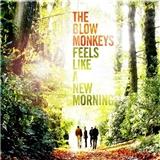The Blow Monkeys - Feels Like A New Morning