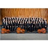 Das Mozarteum Orchester Salzburg