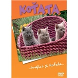 VAR - Koťata - DVD