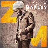 Ziggy Marley - Vinyl - Ziggy Marley