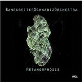 Bamesreiter Schwartz Orchestra - Metamorphosis