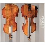 Milan Pala - Violin