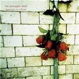 Pineapple Thief - Variations On A Dream (Digi)