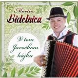 Martin Bidelnica - V tom Jarockom hájku