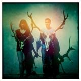 Noisecut - Haj & Lov