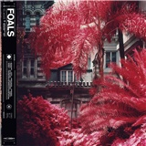 Foals - Everything Not Saved Will Be Lost Part 1 (Vinyl)