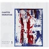Milan Pala - Cantus Moraviae 1 (Milan Pala - husle, viola)