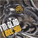 Band of Heysek - I'm Glad I Met You (2x Vinyl)