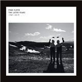 Pink Floyd - The Best Of The Later Years 1987 - 2019 (2x Vinyl)