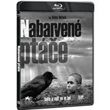 Film - Nabarvené ptáče (+ bonus Bluray)