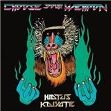 Hiatus Kaiyote - Choose Your Weapon (Vinyl)