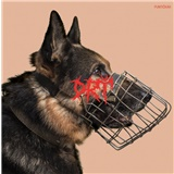 Drť - Puntičkár (Vinyl)