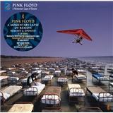 Pink Floyd - A Momentary Lapse Of Reason (Vinyl)